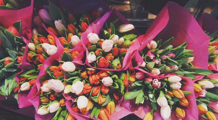 כל הסיבות הכי טובות לרכוש פרחים לאהובים שלכם